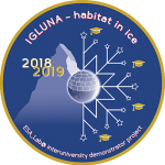 igluna mission badge